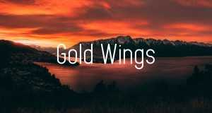 Gold Wings (Tofû Remix)