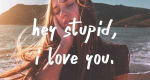 Hey Stupid, I Love You