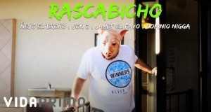 Rascabicho