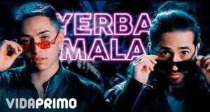 Yerba Mala