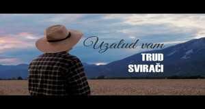 Uzalud Vam Trud Svirači