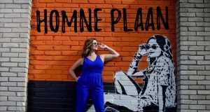 Homne Plaan (Remix)
