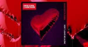 Don't Leave Me Alone (David Guetta Remix)
