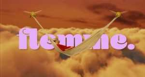Flemme
