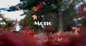 Mono (Vici Rom Shen)