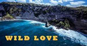 Wild Love / Pika
