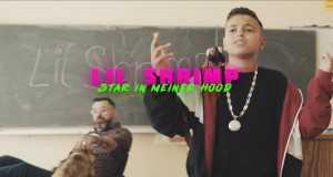 Star In Meiner Hood