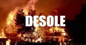 Desole