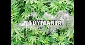 Ntoymania