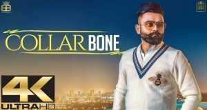Collar Bone