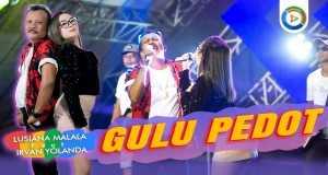 GULU PEDOT