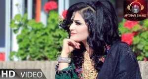 Pashto Tapy