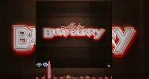 Buryberry