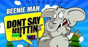 Don't Say Nuttin