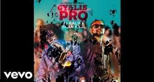 Gyalis Pro