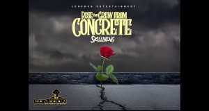 Rose That Grew From Concrete