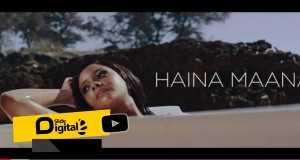 Haina Maana