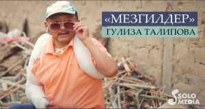 Mezgilder