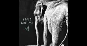 Feels Like Me