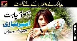 Ameer Niazi
