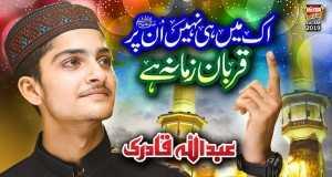 Ek Mai Hi Nahi Unpar Qurban Zamana