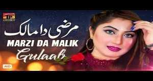Marzi Da Malik