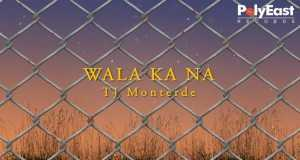 Wala Ka Na