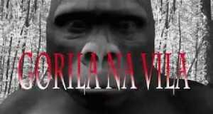 Gorila Na Vila