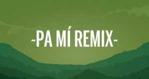 Pa Mi Remix