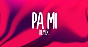 Pa Mi (Remix)