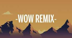 Wow Remix