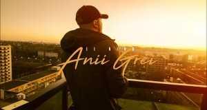 Anii Grei