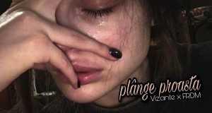 Plânge Proasta