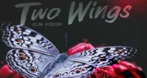 Two Wings (Slow Version)