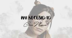 Mi Necesidad