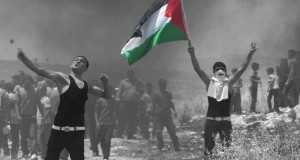 Fria Palestina