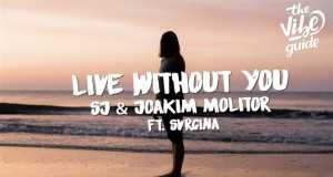 Live Without You