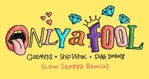 Only A Fool (Low Steppa Remix)