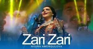 Zari Zari