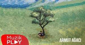 Armut Ağaci