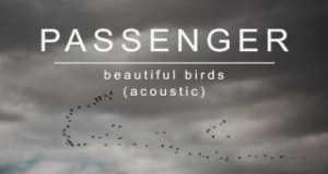 Beautiful Birds (Acoustic)