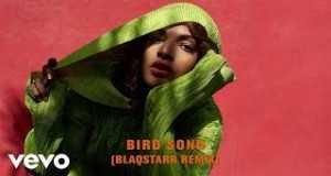 Bird Song (Blaqstarr Remix)