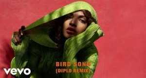 Bird Song (Diplo Remix/audio)