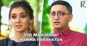 Hamma Harakatda