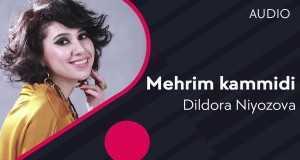 Mehrim Kammidi