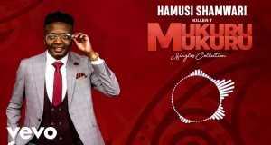 Hamusi Shamwari