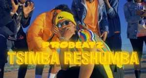 Tsimba Reshumba