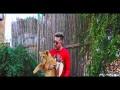 Fi Bladi Dalmoni - Top 100 Songs