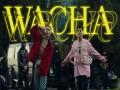 Wacha - Top 100 Songs