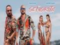 Señorita - Top 100 Songs